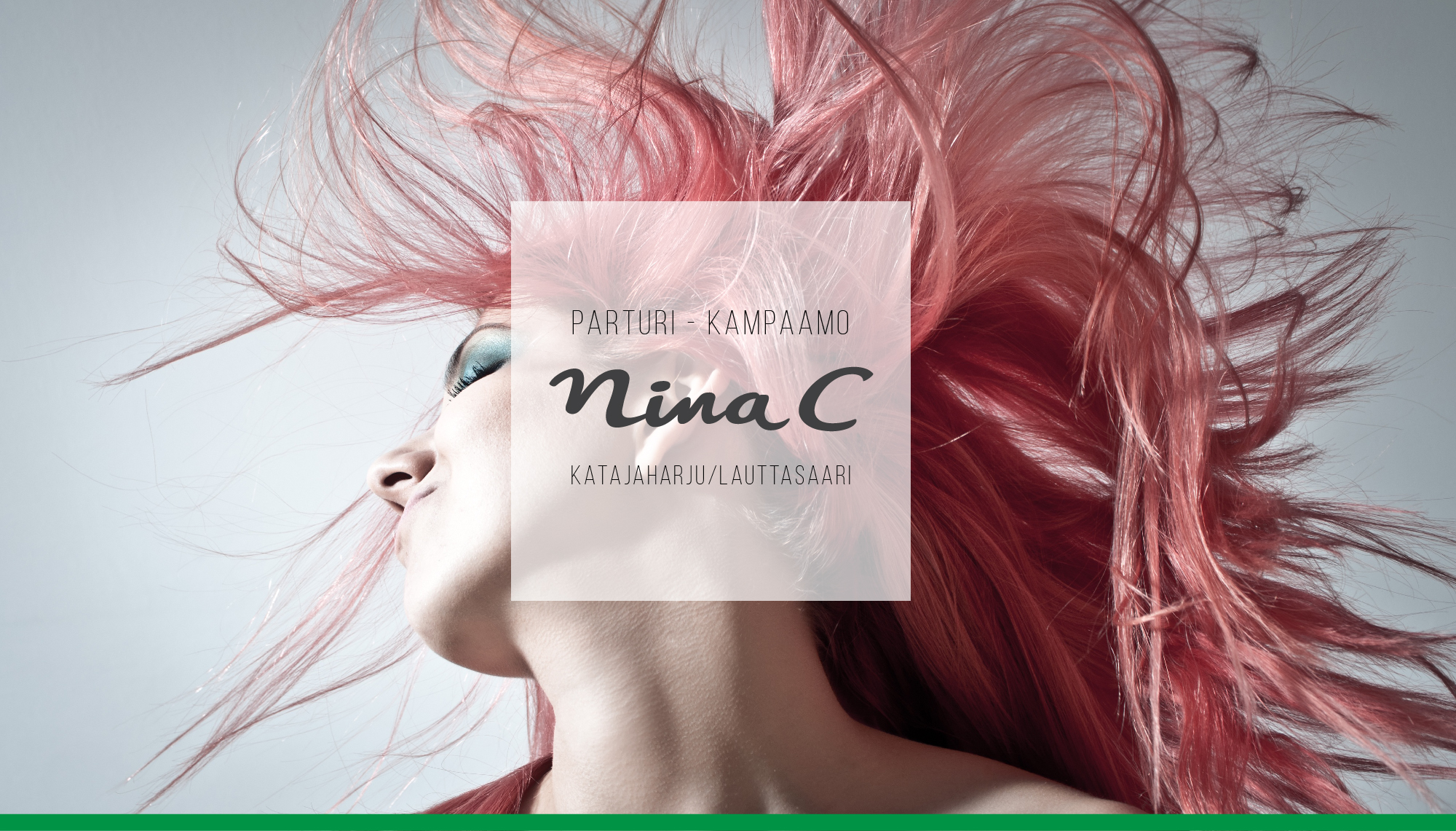Ninac_carusel-01